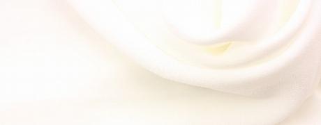 bg-white.jpg